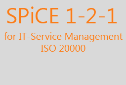 SPiCE 1-2-1 for IT Service Management